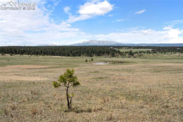 0 E Palmer Divide Avenue, Larkspur, CO 80118 (#7375649) :: The Kibler Group