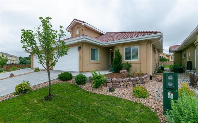 13844 Paradise Villas Grove, Colorado Springs, CO 80921 (#7377698) :: Action Team Realty