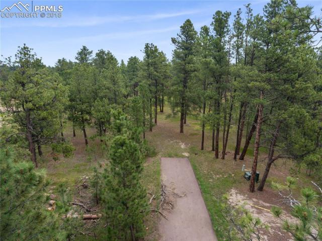 15064 Pole Pine Point, Colorado Springs, CO 80908 (#7379248) :: The Hunstiger Team