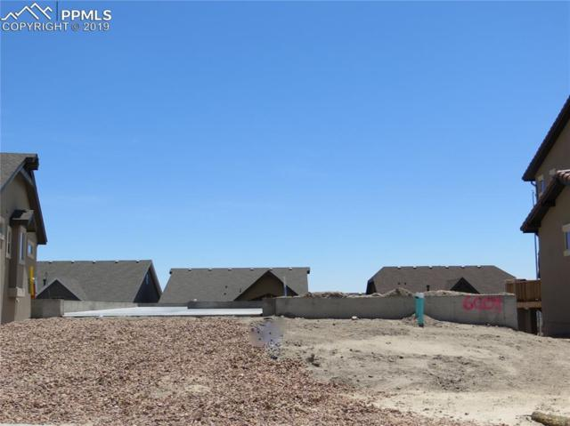 6009 Griffin Drive, Colorado Springs, CO 80924 (#7380573) :: 8z Real Estate