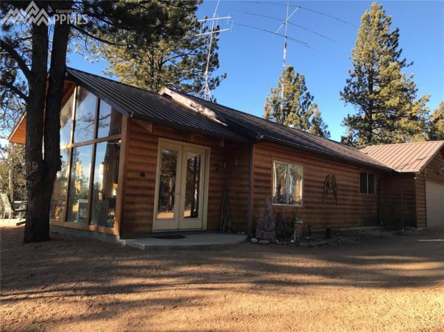 1098 Badger Trail, Florissant, CO 80816 (#7384240) :: 8z Real Estate