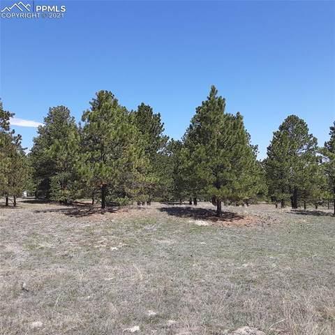 11283 Mosey Trail, Colorado Springs, CO 80908 (#7384983) :: Dream Big Home Team | Keller Williams