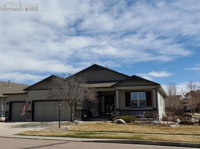 9503 Newport Plum Court, Colorado Springs, CO 80920 (#7388332) :: Jason Daniels & Associates at RE/MAX Millennium