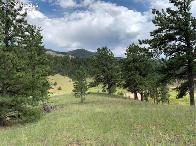 4922 County 1 Road, Cripple Creek, CO 80820 (#7389693) :: Tommy Daly Home Team