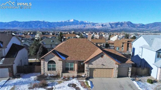 9040 Salford Lane, Colorado Springs, CO 80920 (#7391063) :: Jason Daniels & Associates at RE/MAX Millennium