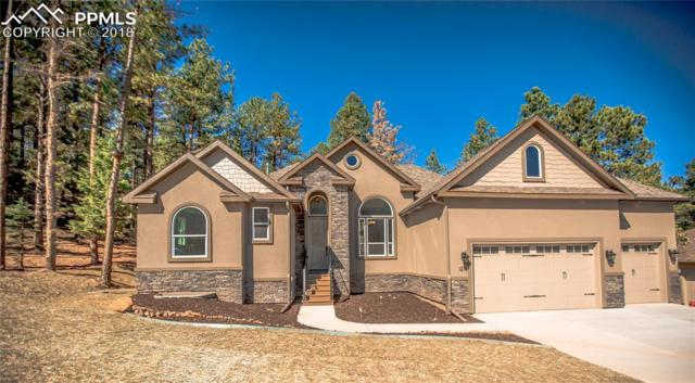 1210 Cottontail Trail, Woodland Park, CO 80863 (#7393966) :: The Hunstiger Team