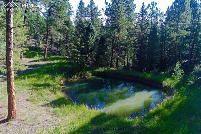 TBD Being Verified Road, Woodland Park, CO 80863 (#7394735) :: The Treasure Davis Team