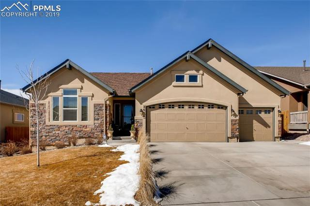 2656 Farrier Court, Colorado Springs, CO 80922 (#7395032) :: Tommy Daly Home Team