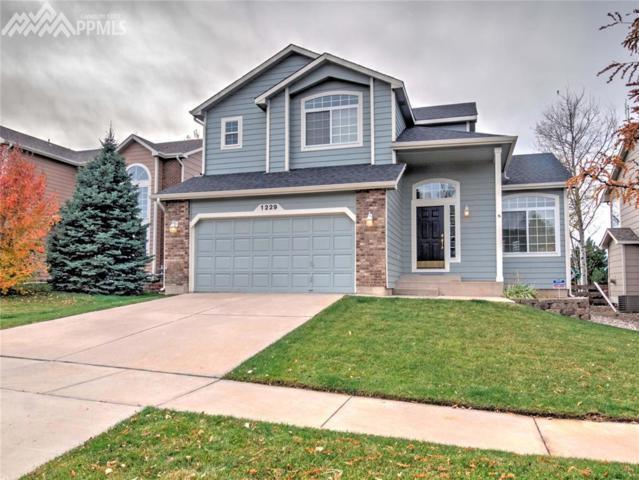 1229 Mount Estes Drive, Colorado Springs, CO 80921 (#7395652) :: Jason Daniels & Associates at RE/MAX Millennium