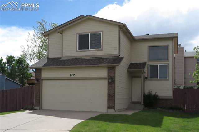 6255 Dry Gulch Court, Colorado Springs, CO 80922 (#7397325) :: The Daniels Team