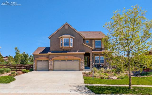 9363 Lizard Rock Trail, Colorado Springs, CO 80924 (#7397704) :: Jason Daniels & Associates at RE/MAX Millennium