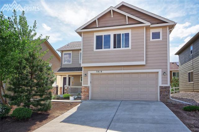3818 Papuan Drive, Colorado Springs, CO 80922 (#7403153) :: 8z Real Estate