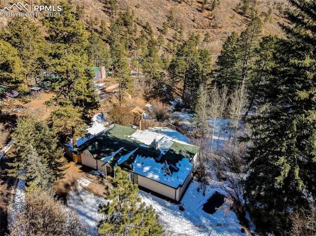 10204 Mountain Road, Cascade, CO 80809 (#7403892) :: The Treasure Davis Team