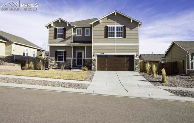 6919 Thorn Brush Way, Colorado Springs, CO 80923 (#7404400) :: Tommy Daly Home Team