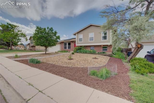 5019 Picket Drive, Colorado Springs, CO 80918 (#7408259) :: The Treasure Davis Team