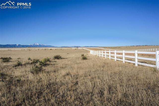 19031 Good Life View, Calhan, CO 80808 (#7412060) :: The Hunstiger Team