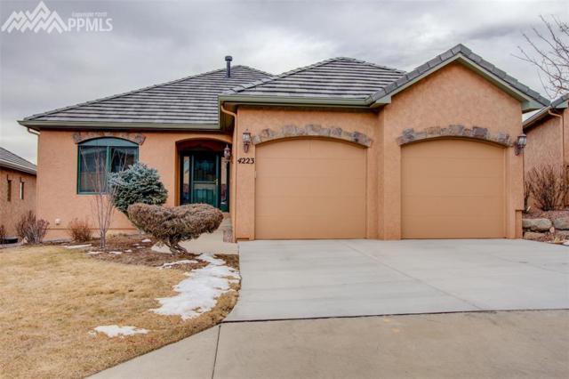 4223 Star Vista Court, Colorado Springs, CO 80906 (#7414451) :: The Treasure Davis Team