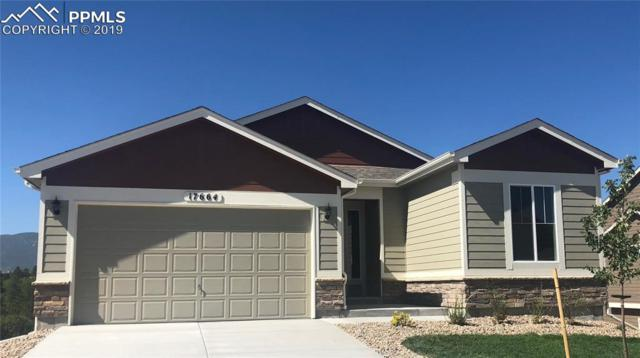 17664 Lake Side Drive, Monument, CO 80132 (#7416103) :: Action Team Realty