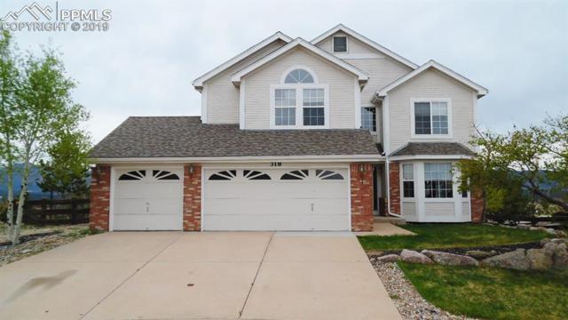 318 Mountain Lover Terrace, Colorado Springs, CO 80921 (#7420705) :: Fisk Team, RE/MAX Properties, Inc.