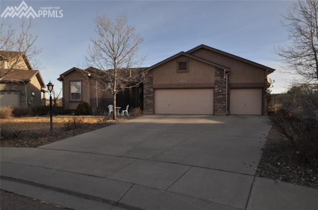 3654 Oak Meadow Drive, Colorado Springs, CO 80920 (#7420747) :: 8z Real Estate