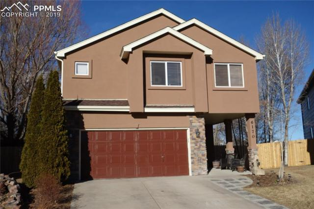 6170 Plowshare Court, Colorado Springs, CO 80922 (#7422619) :: 8z Real Estate