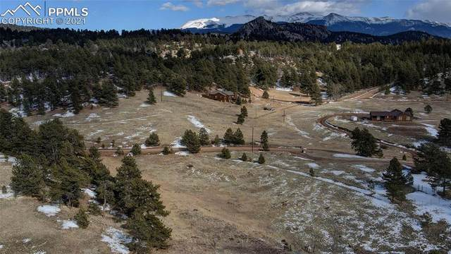 297 High Pasture Road, Florissant, CO 80816 (#7424891) :: The Treasure Davis Team | eXp Realty