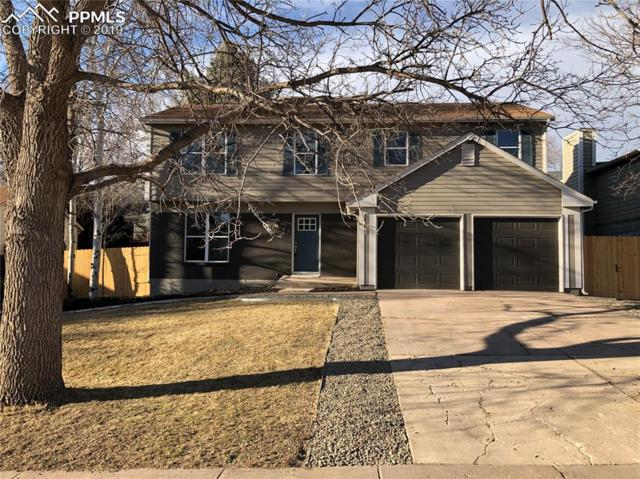 4815 S Old Brook Circle, Colorado Springs, CO 80917 (#7426405) :: Relevate Homes | Colorado Springs