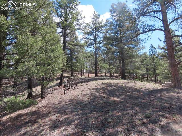 105 Pathfinder Road, Florissant, CO 80816 (#7430972) :: Compass Colorado Realty