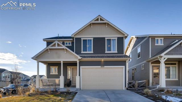 8269 Cypress Wood Drive, Colorado Springs, CO 80927 (#7431607) :: Venterra Real Estate LLC