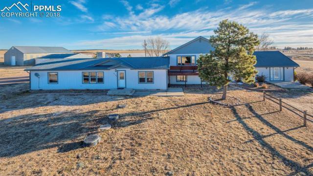 8170 Mustang Place, Colorado Springs, CO 80908 (#7434316) :: Colorado Home Finder Realty