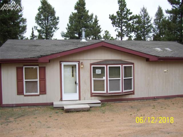 4894 Wildhorn Road, Florissant, CO 80816 (#7434920) :: The Peak Properties Group