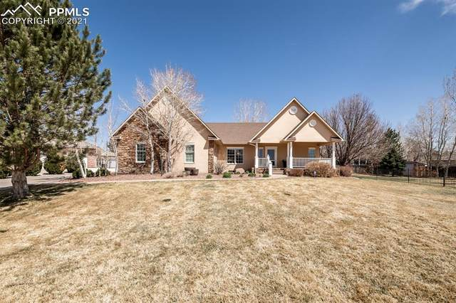 4 Kalanchoe Court, Pueblo, CO 81008 (#7434993) :: Tommy Daly Home Team