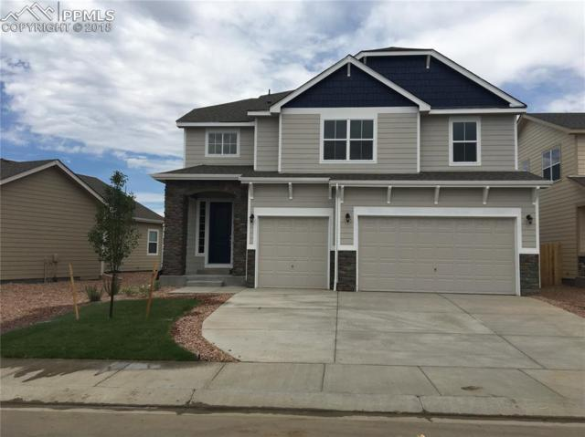 9728 Wando Drive, Colorado Springs, CO 80925 (#7436588) :: Jason Daniels & Associates at RE/MAX Millennium