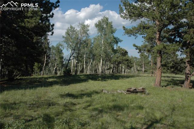 TBD 2 County 51 Road, Divide, CO 80814 (#7438045) :: Colorado Home Finder Realty