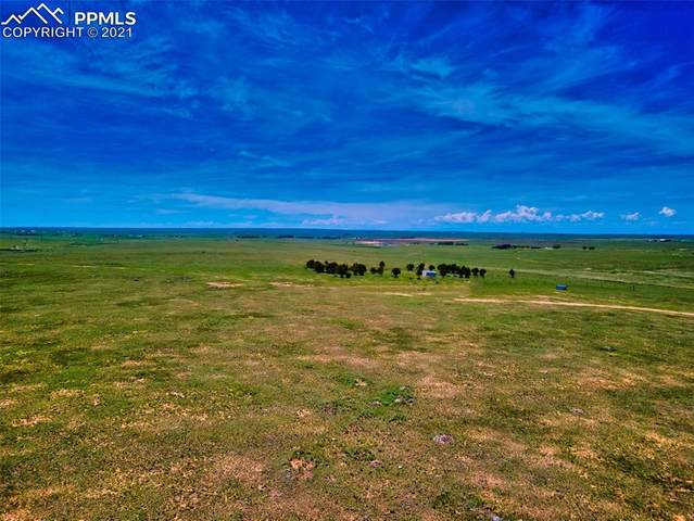 Pamplona Point, Yoder, CO 80864 (#7441986) :: The Treasure Davis Team | eXp Realty