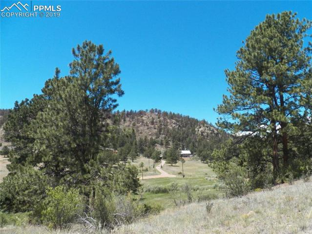 525 Spring Valley Drive, Florissant, CO 80816 (#7443978) :: The Daniels Team