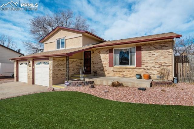 6771 Nokomis Circle, Colorado Springs, CO 80915 (#7444991) :: Tommy Daly Home Team