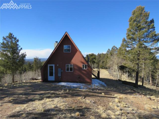 76 Green Horn Trail, Florissant, CO 80816 (#7450191) :: Action Team Realty