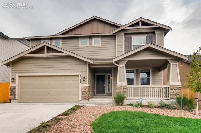 2657 Equine Court, Colorado Springs, CO 80922 (#7450341) :: 8z Real Estate