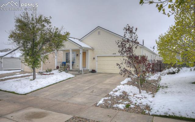 6538 Fowler Drive, Colorado Springs, CO 80923 (#7455032) :: The Peak Properties Group