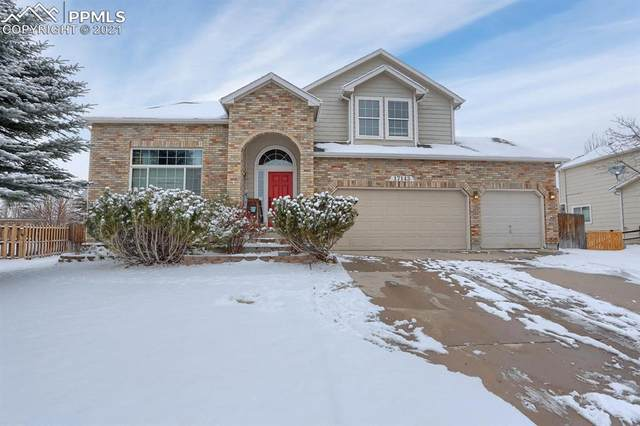17143 Buffalo Valley Path, Monument, CO 80132 (#7460871) :: The Harling Team @ HomeSmart