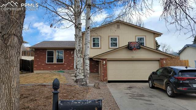 5602 Mosquito Pass Drive, Colorado Springs, CO 80917 (#7461211) :: The Gold Medal Team with RE/MAX Properties, Inc