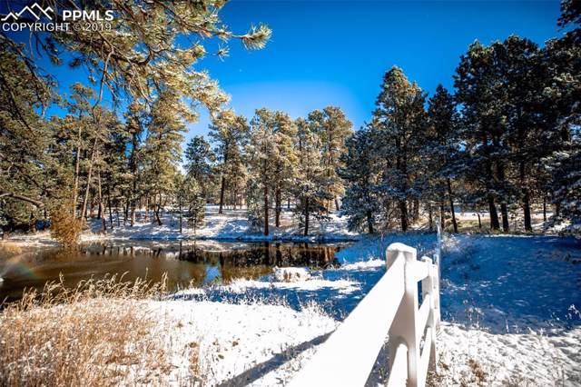 3388 Blue Heron Spring Lane, Colorado Springs, CO 80908 (#7463396) :: Fisk Team, RE/MAX Properties, Inc.