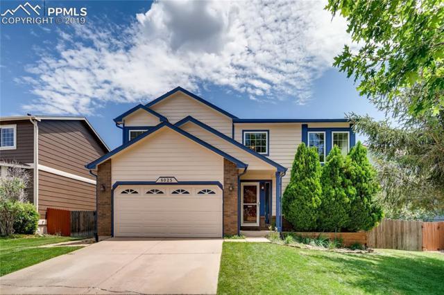 8025 Chancellor Drive, Colorado Springs, CO 80920 (#7464634) :: 8z Real Estate
