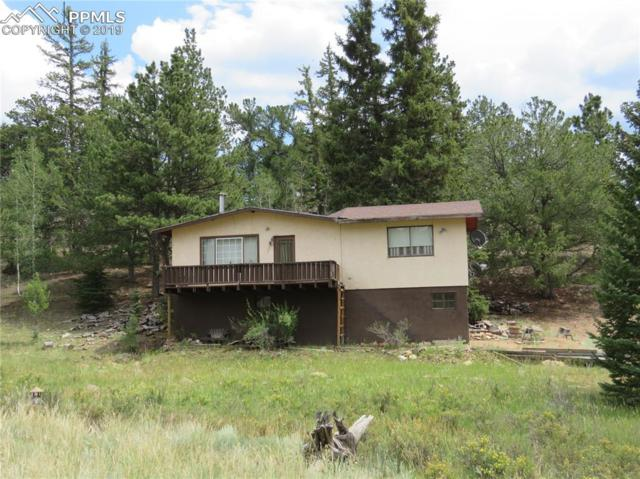 60 Perch Drive, Lake George, CO 80827 (#7465429) :: The Kibler Group