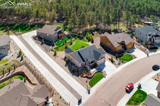 16191 St Lawrence Way, Monument, CO 80132 (#7466157) :: The Treasure Davis Team