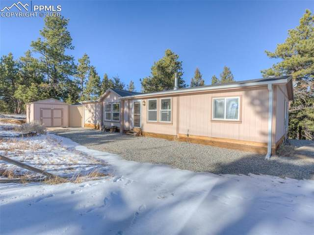 1306 Singletree Road, Hartsel, CO 80449 (#7470152) :: Finch & Gable Real Estate Co.