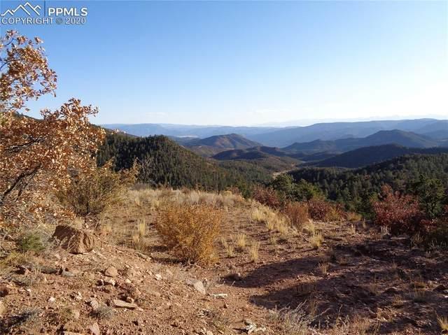 690 N Pine Vista, Canon City, CO 81212 (#7470404) :: Colorado Home Finder Realty