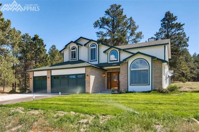 15824 El Dorado Way, Larkspur, CO 80118 (#7472445) :: 8z Real Estate