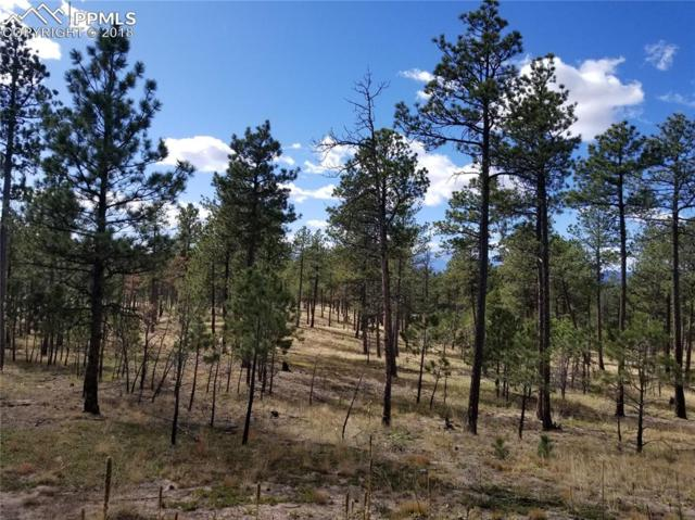 LOT 43 Unknown, Colorado Springs, CO 80908 (#7473192) :: The Hunstiger Team